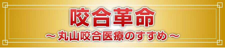咬合革命~丸山咬合医療のすすめ~DVD