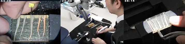ガッタパーチャ除去の技術が目で見て学べる